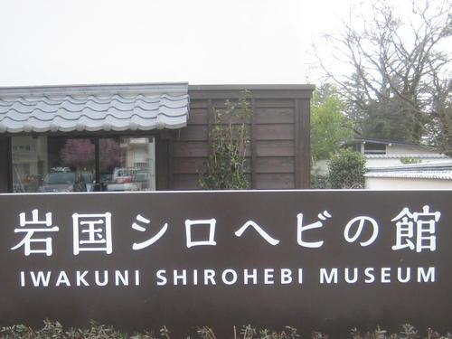 岩国シロヘビの館